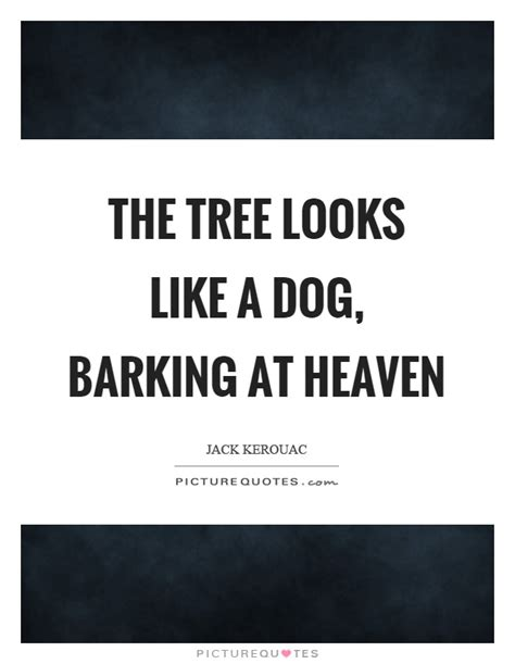 when the dogs bark treed a year on the trail of the longtails classic reprint books the tree looks like a barking at heaven picture quotes