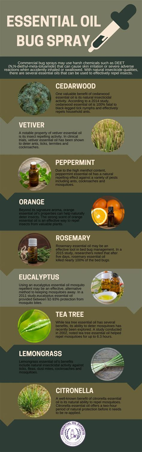 ideas  bed bug spray  pinterest bed bugs bed bug remedies  bed bugs hotels