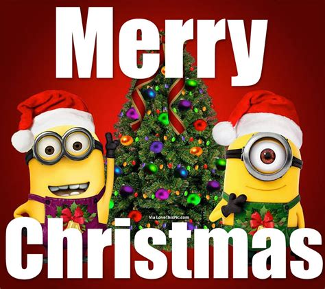merry christmas minions pictures   images  facebook tumblr pinterest  twitter
