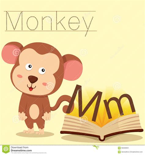 words of alphabet m mustaches and monkey free alphabet illustrator of m for monkey vocabulary stock vector