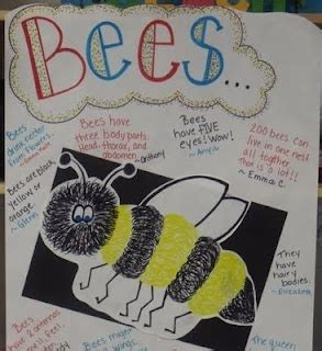 reading street themes 90 best preschool insects images on pinterest