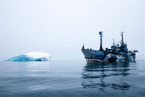 Kaos Sea Shepherd Neptune Navy is sea shepherd a navy a cimsec debate