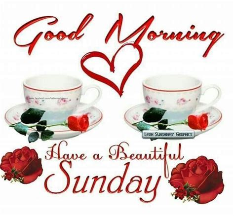 sunday good morning beautiful good morning have a beautiful sunday pictures photos