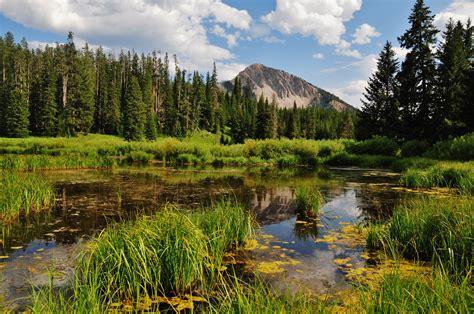 imagenes de paisajes naturales bosques imagenes de bosques magicos hairstylegalleries com