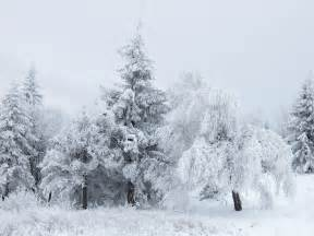 Photos Of Snow File Snow At Shipka Pass 3 Jpg Wikimedia Commons