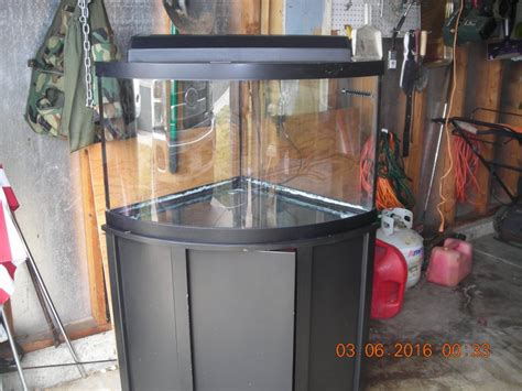 55 Gallon Stand 55 gallon fish reptile aquarium with stand arvada 80003