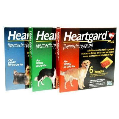 heartgard for puppies heartgard plus heartworm vetrxdirect pharmacy 26 50 lbs 12 month supply