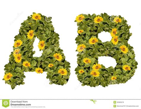 c de fiori flower alphabet a b flowers yellow on green lettering
