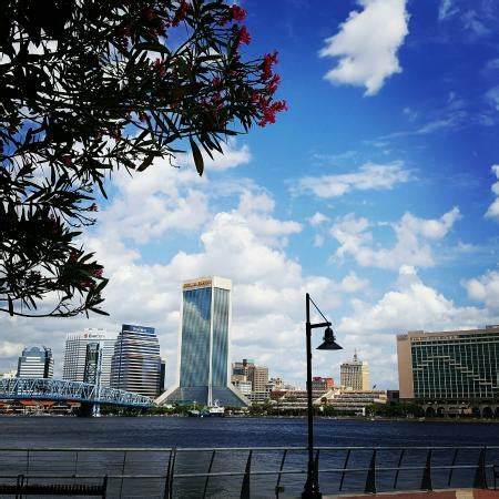 jacksonville boat tours river cruises jacksonville all you need to know before