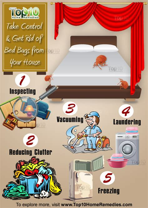 how to dominate in bed bed bugs an annapolis urgent care spotlight eye on