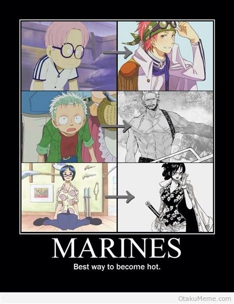 One Piece Meme - one piece memes anime amino