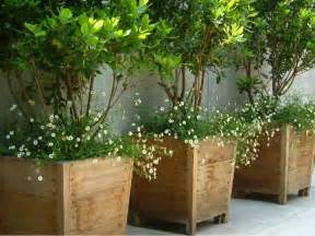 best 25 large wooden planters ideas on bamboo