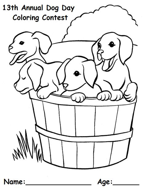Horse Sweepstakes 2017 - breyer horse coloring contest coloring pages