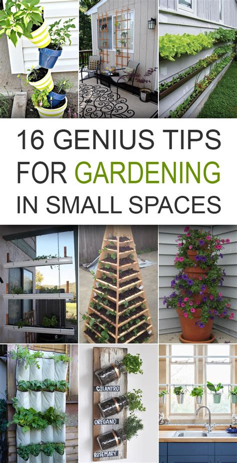 gardening in small spaces ideas gardening in small spaces ideas gardening ideas for