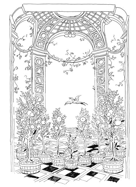 coloring book for adults imgur lost garden coloring book orangery by pippa imgur