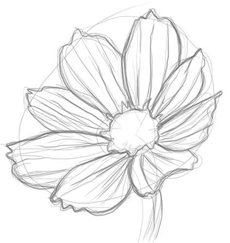 how to draw hands by lily draws on deviantart just think about if you hand draw a lovely rose or lily