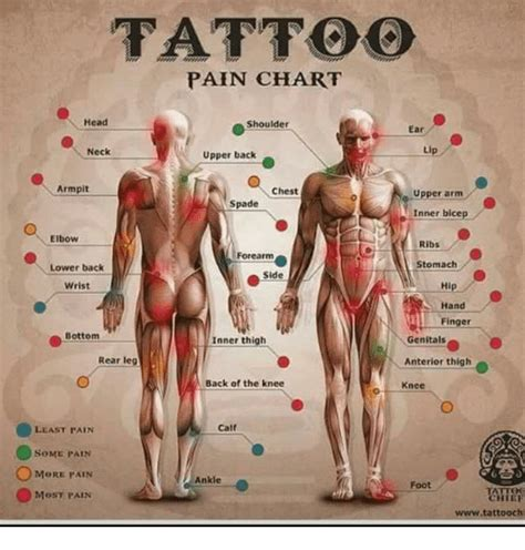 can i handle tattoo pain quiz knee tattoo pain tattoo collections
