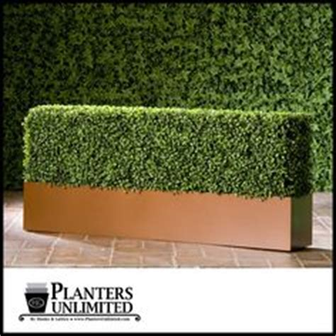 Hedge In Planter Boxes by 1000 Images About Artificial Hedges On