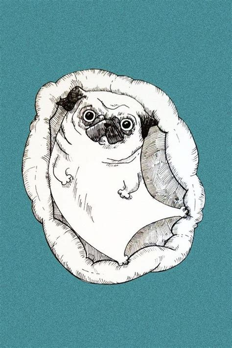 pugs drawings the world s catalog of ideas