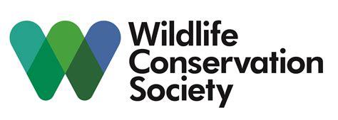 Wc S by Biomeme Saving Siberian Tigers