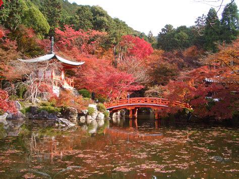imagenes paisajes japoneses takenoko las fotos de hideyo san