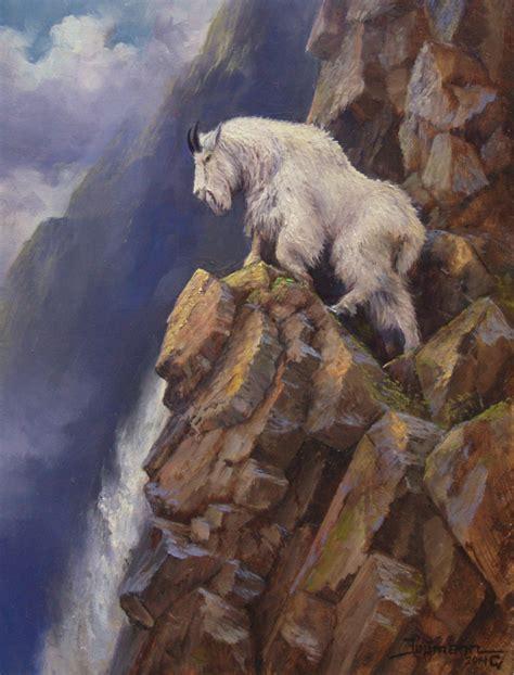 ascending mountain goat stefan baumann