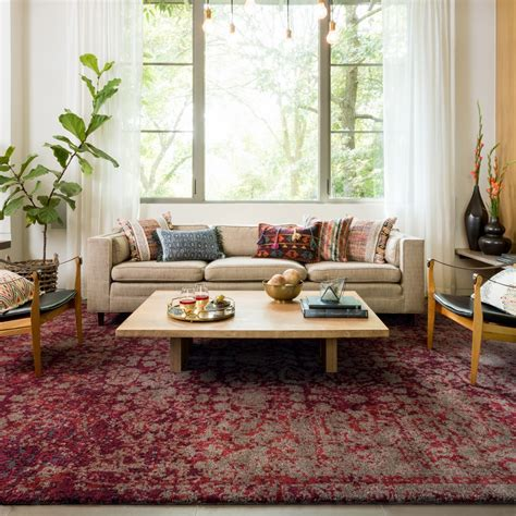 transform  room   house   area rug sonoma