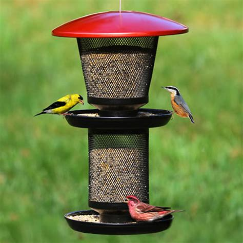 duncraft com no no multi seed wild bird feeder