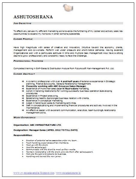 Resume Format For Mba Marketing Pdf by Professional Curriculum Vitae Resume Template Sle