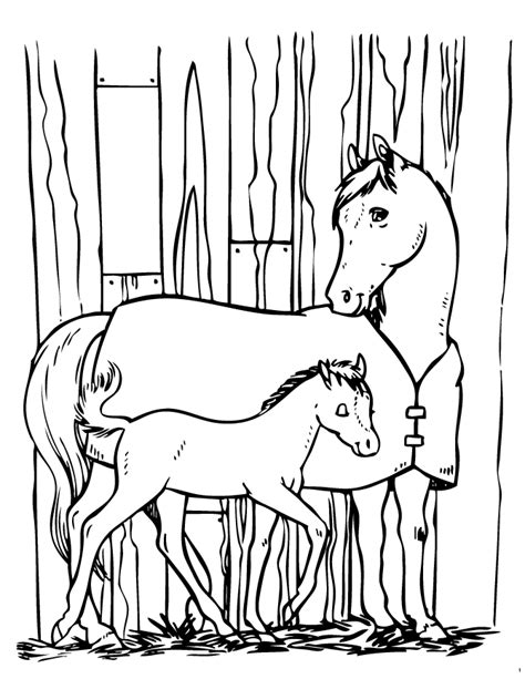 coloring pages of horses and ponies horse and pony coloring page h m coloring pages