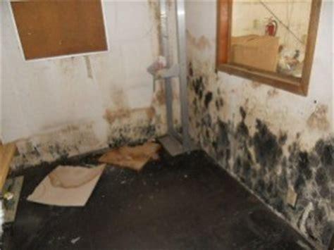 mold in basement atlanta ga