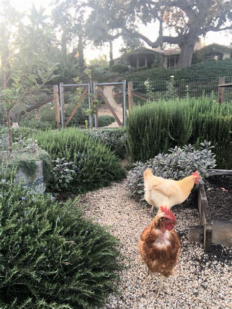 patina garden patina farm vegetable garden chicken coop the