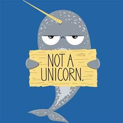 best 25 narwhal tattoo ideas on pinterest whale drawing