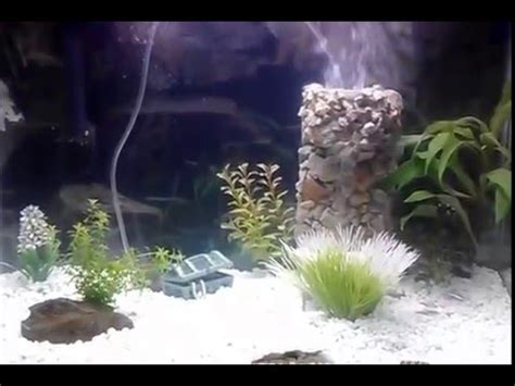 aquarium tank underwater sand fall sand fountain youtube