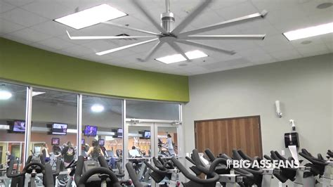 big assed ceiling fans big fans customer testimonial parks health and