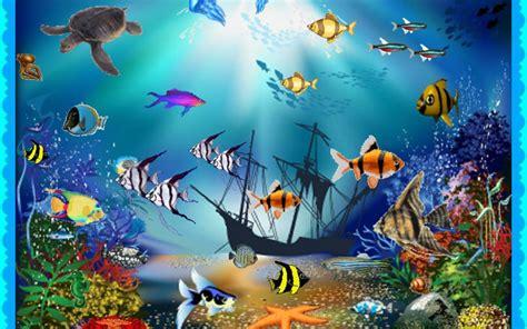 hd aquarium wallpaper wallpapersafari