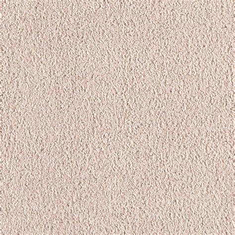 Home Decorators Carpet by Home Decorators Collection San Rafael I S Color Clear