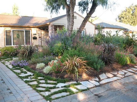 drought tolerant front yard home exteriors on front yards front yard