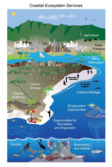 coastal services coastal ecosystem services national climate assessment