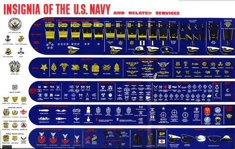 united states navy ranks enlisted insignias department of defense
