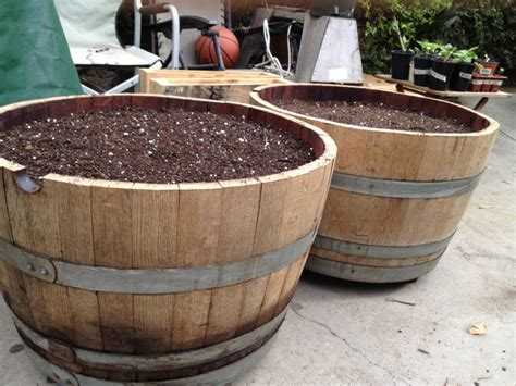 Whisky Barrels Planters by Whiskey Barrel Planter Project