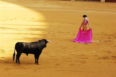 and bull matador versus bull the corrida nextbiteoflife