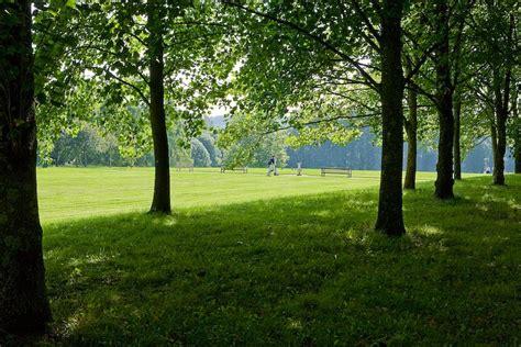 imagenes de paisajes sin texto shady walks in hursley park ibm hursley 169 peter facey