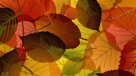 wallpaper daun keren mengumpulkan jatuh daun hd wallpaper desktop lebar