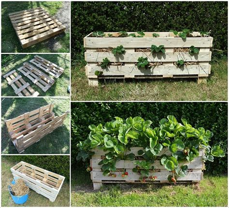 Make A Strawberry Planter by Make This Amazing Strawberry Planter From A Single Pallet