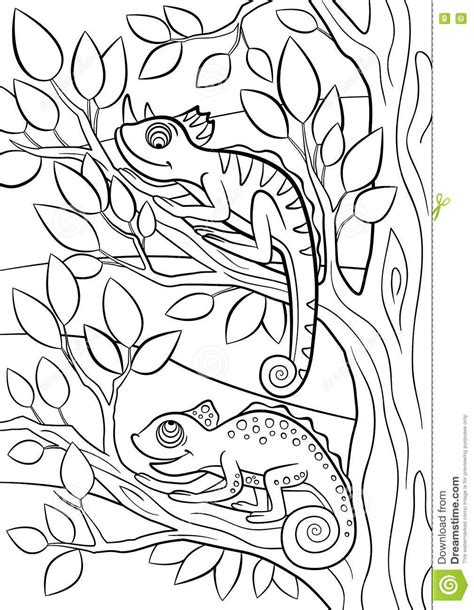coloring pages wild animals   cute chameleon