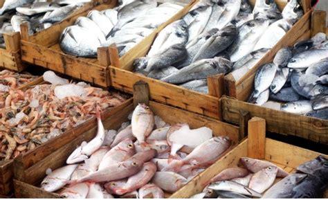 cucinare pesce congelato come friggere pesce congelato