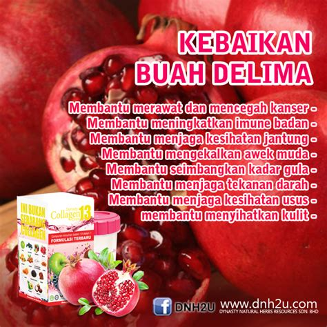 Dynasty Collagen Drink khasiat delima dynasty herbs resources sdn bhd