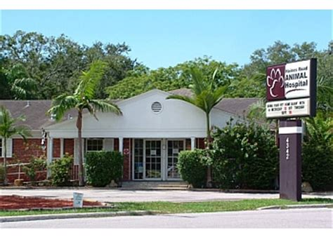 animal house st pete 3 best veterinary clinics in st petersburg fl threebestrated review