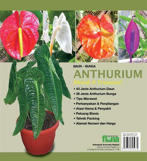 jual buku daun bunga anthurium mewah fenomenal oleh tim flona gramedia digital indonesia